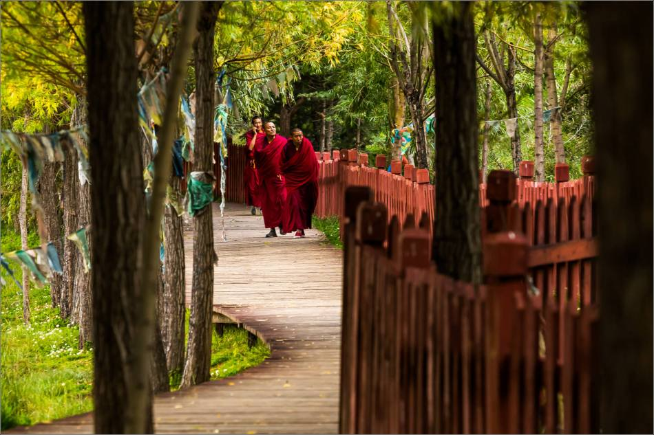 Buddhist monks on a stroll at Sumtseling - © Christopher Martin-6323
