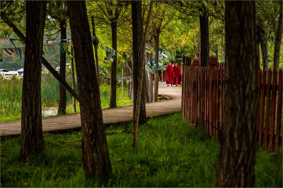 Buddhist monks on a stroll at Sumtseling - © Christopher Martin-6325-2