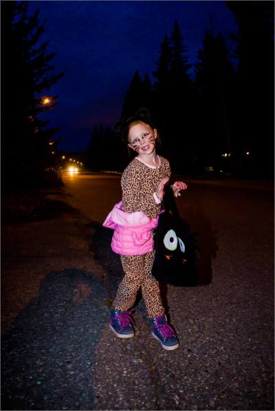 Kezia the leopard at Halloween - © Christopher Martin-2516