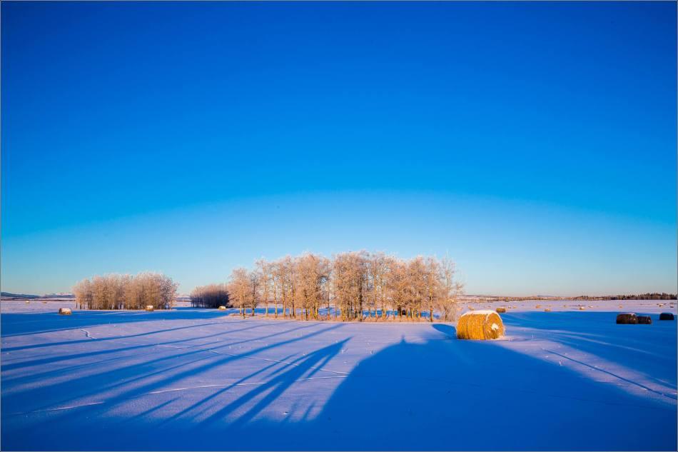 Dawn hoar frost landscape - © Christopher Martin-9755