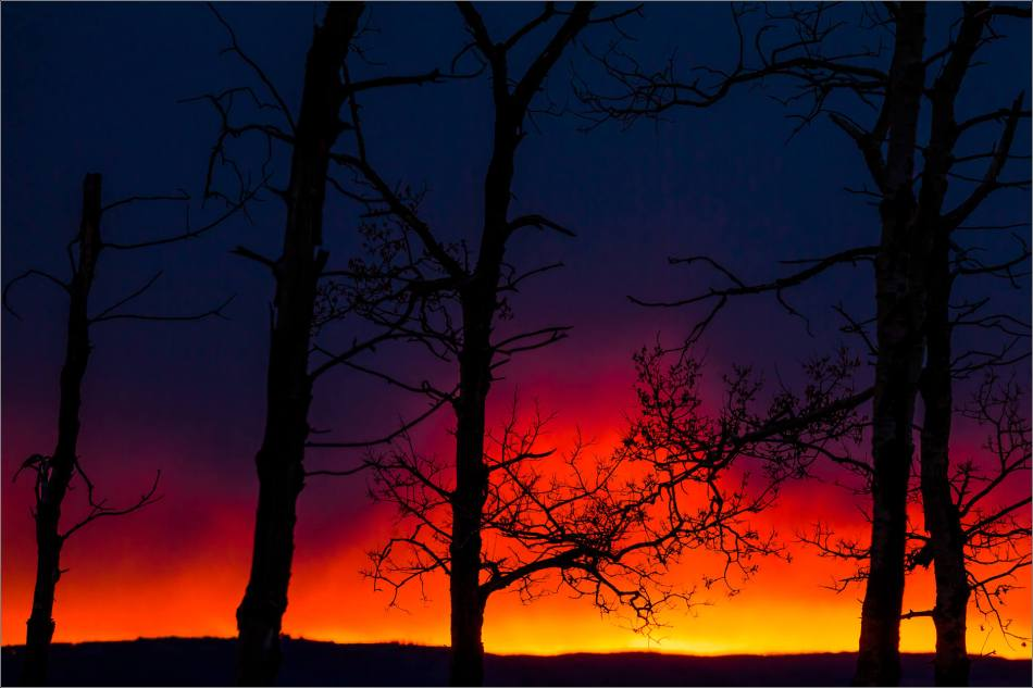 Prairie sunrise silhouettes- © Christopher Martin-7688