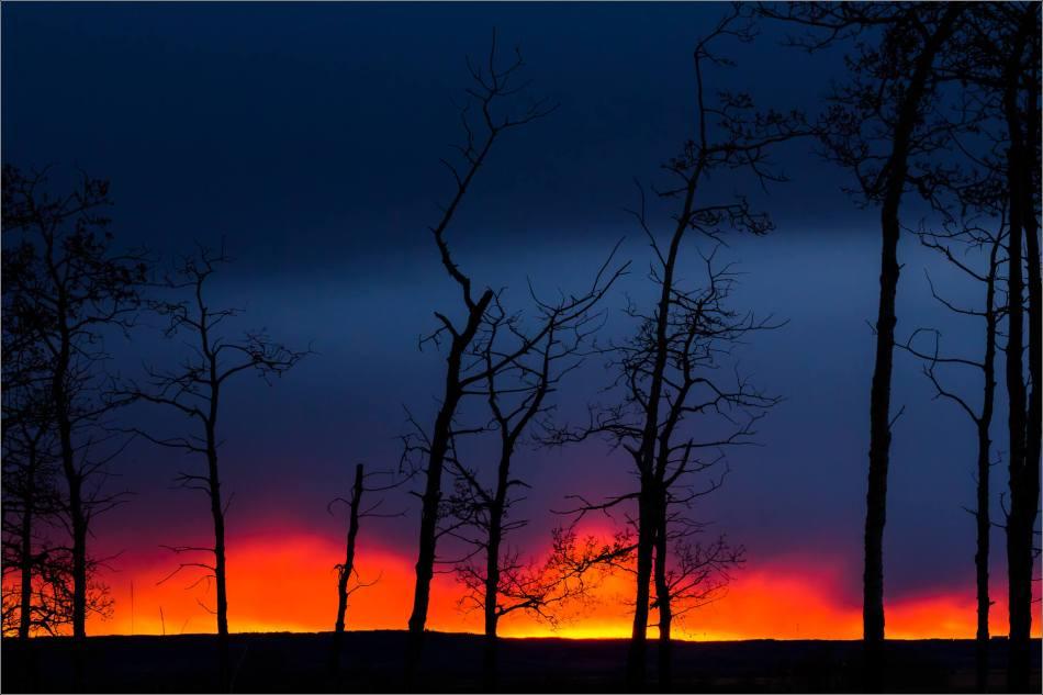 Prairie sunrise silhouettes- © Christopher Martin-7701