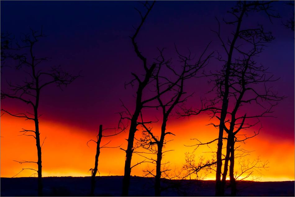 Prairie sunrise silhouettes- © Christopher Martin-7733