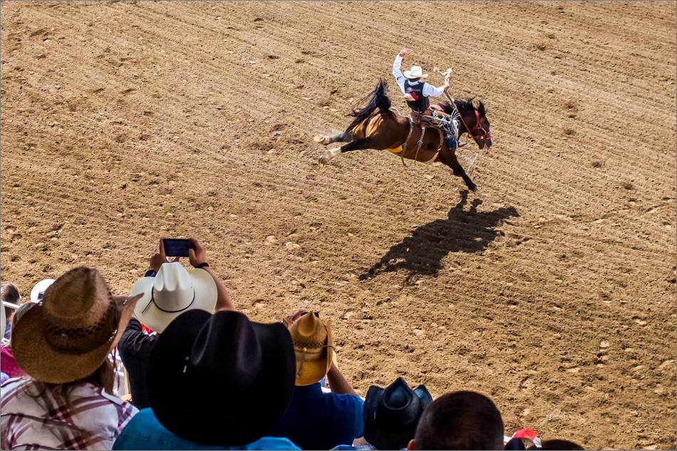 Calgary Stampede Day 1 Rodeo - © Christopher Martin-245-2