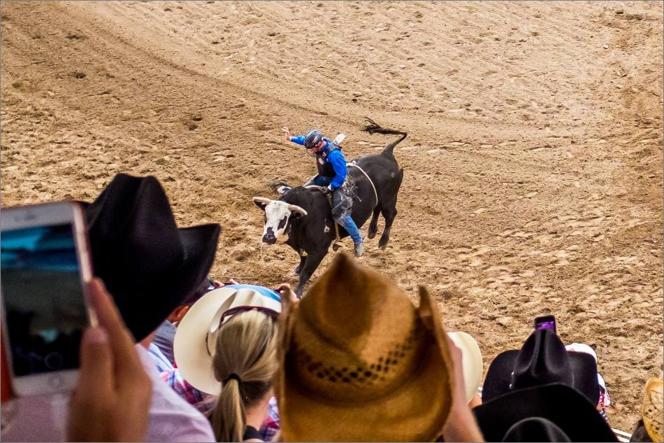 Calgary Stampede Day 1 Rodeo - © Christopher Martin-3
