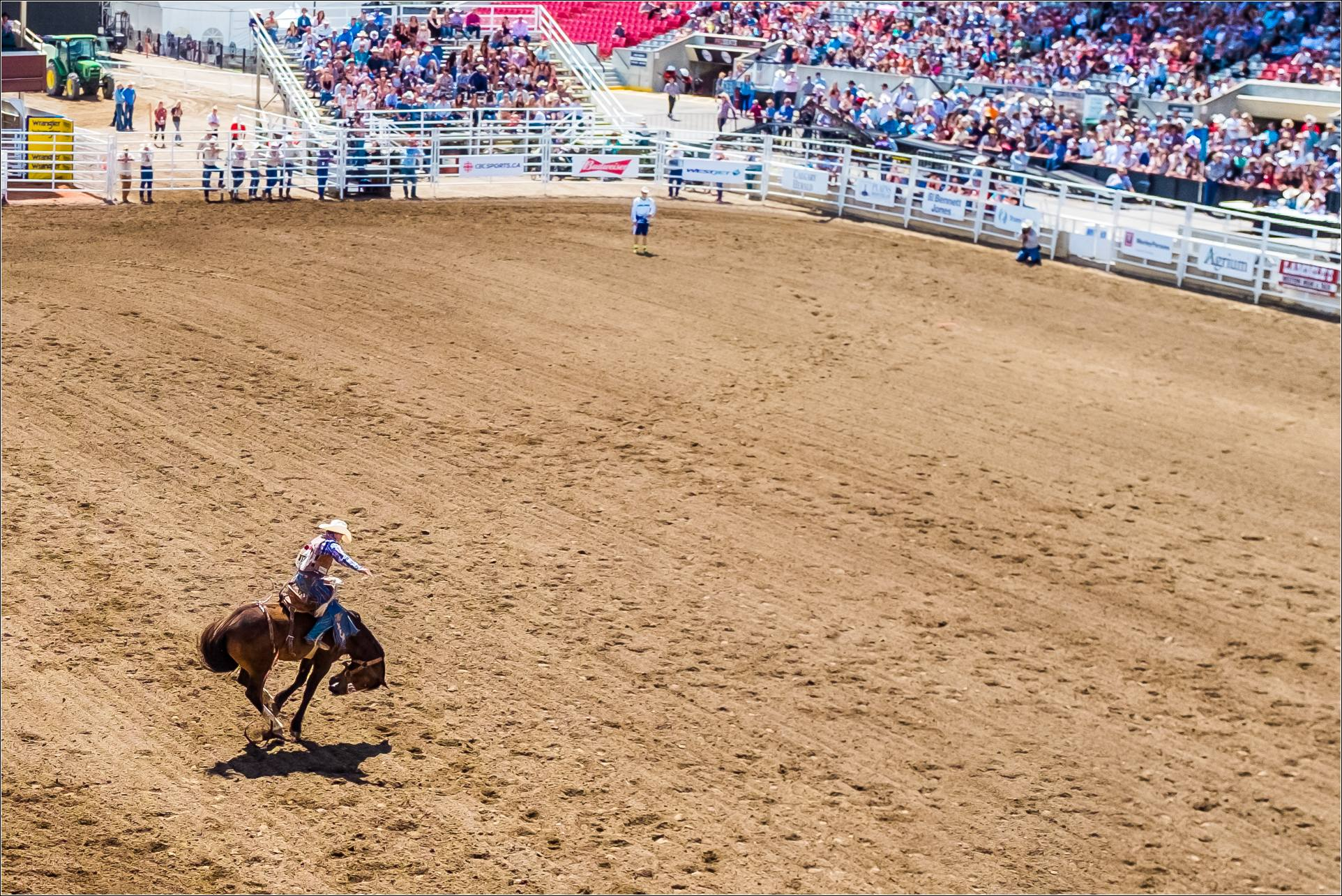 Calgary Stampede Christopher Martin Photography