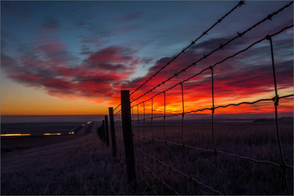a-sunrise-in-the-fog-christopher-martin-4787