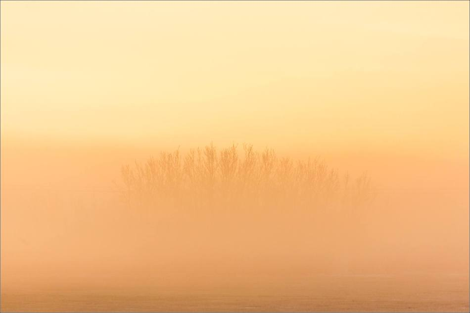 a-sunrise-in-the-fog-christopher-martin-4892