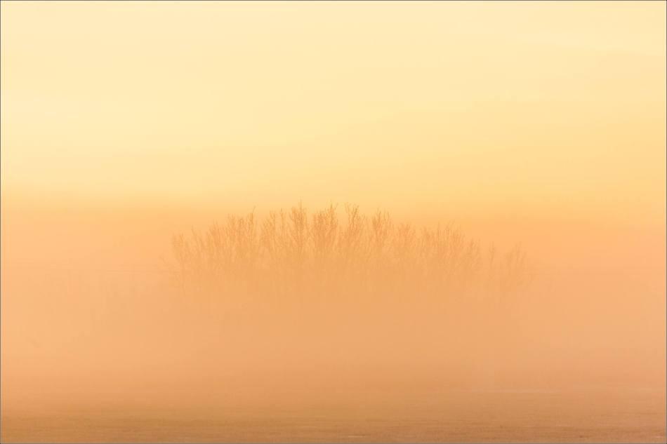 a-sunrise-in-the-fog-christopher-martin-4892