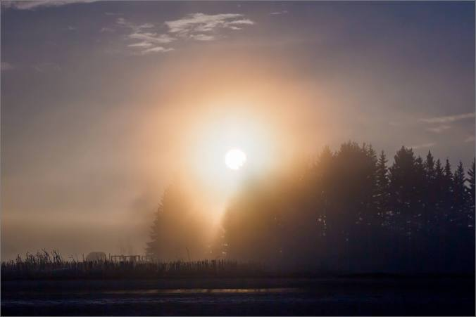 a-sunrise-in-the-fog-christopher-martin-4975