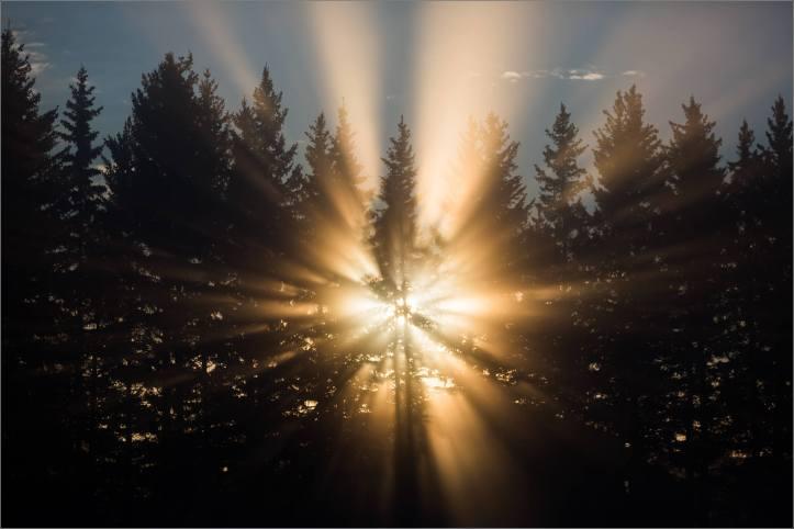 a-sunrise-in-the-fog-christopher-martin-4999