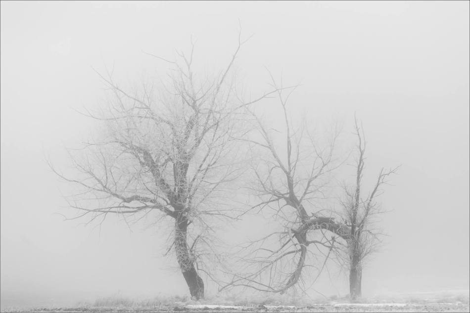 a-sunrise-in-the-fog-christopher-martin-5355