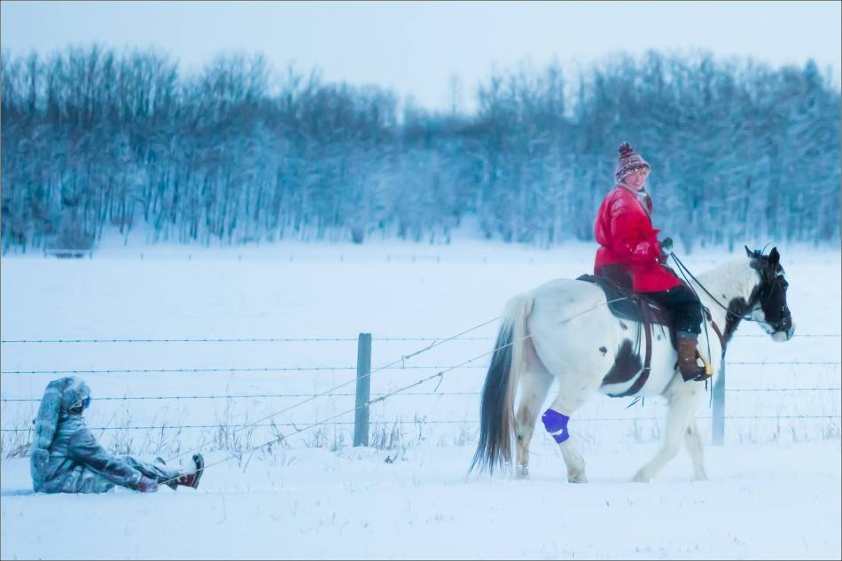 horse-and-sleigh-christopher-martin-3021